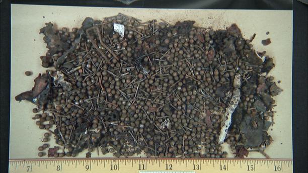 2013 Boston Marathon bomb shrapnel, including BB's and nails, from pressure cooker.