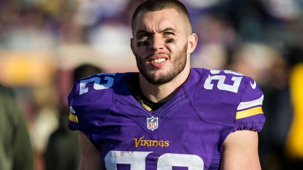 Minnesota Vikings safety Harrison Smith (22) against the St. Louis Rams at TCF Bank Stadium. The Vikings defeated the Rams 21-18.