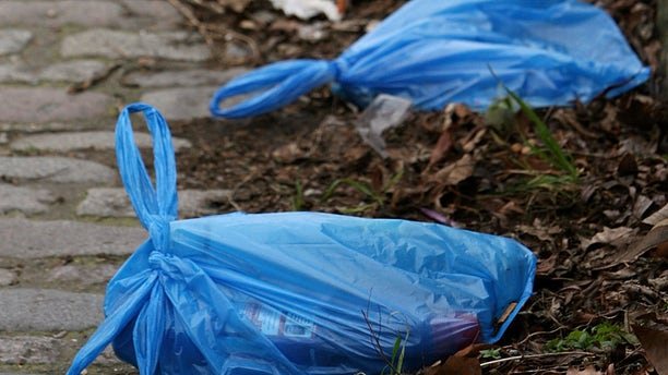 LONDON - MARCH 03:  Plastic bags of rubbish discarded on a walkway near Regent's Canal on February 29, 2008 in London, England. The Prime Minister Gordon Brown has stated that he will force retailers to help reduce the use of plastic bags if they do not do so voluntarily.  (Photo by Cate Gillon/Getty Images)