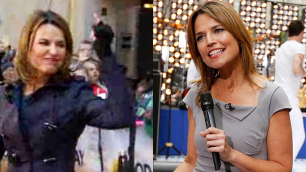 """Savannah Guthrie seemingly gave Matt Lauer the middle finger on """"Today."""""""