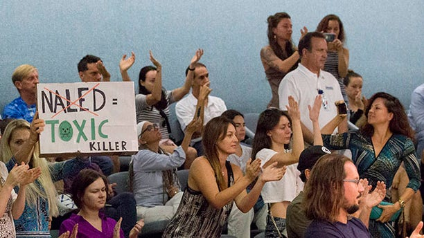 Demonstrators cheer as they pack a Miami Beach, Fla., city commission meeting, Wednesday, Sept. 14, 2016, in Miami Beach. Opponents want to stop the aerial spraying of the insecticide naled, used to combat the Aedes aegypti mosquito. They say the pesticide can cause health problems in people. (AP Photo/Wilfredo Lee)