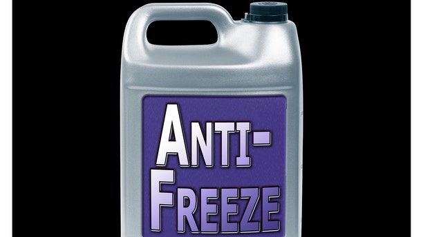 A woman is accused of poisoning her grandmother with anti-freeze, police said.
