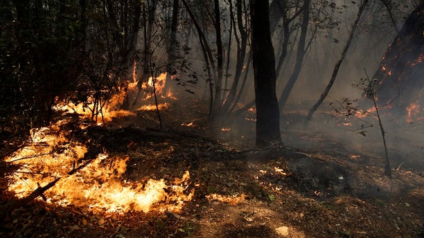 The wildfires have devastated Sonoma County, killing at least 31 people as of Friday, Oct. 13, 2017.