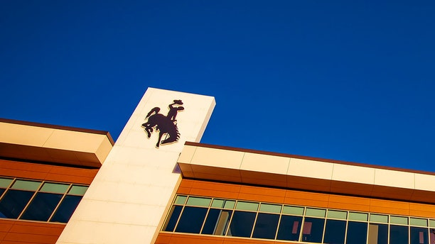 The official logo for the University of Wyoming is a cowboy riding a bucking horse.
