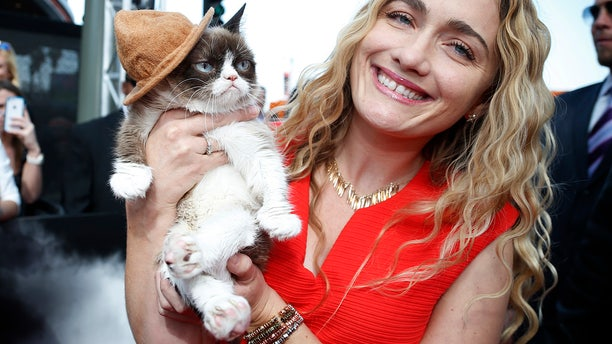 """Grumpy Cat and his owners won a legal battle against a beverage company they claim engaged in """"despicable misconduct."""""""