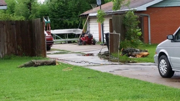Police say a boy witnessed as his 52-year-old mother was struck by a fallen tree branch that killed her following severe weather that impacted much of southeast Texas.
