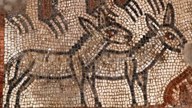 The Noah's Ark mosaic (credit: Jim Haberman).