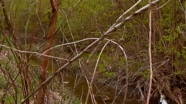 Human remains were discovered in a creek on Saturday during an Earth Day cleanup in an Indianapolis neighborhood.