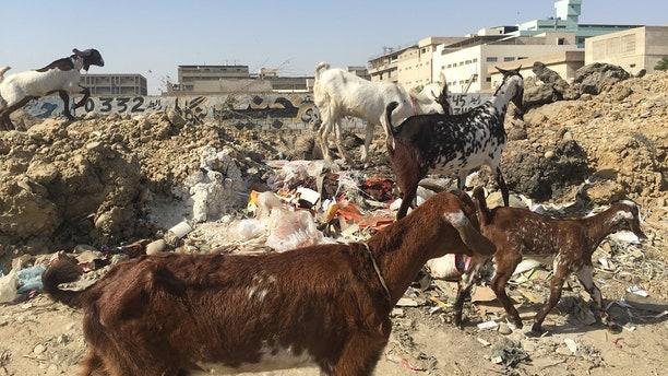Inside Karachi, Pakistan's largest and once most violent city.