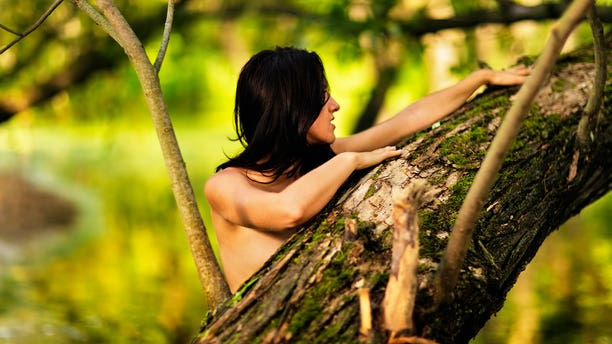 Bois de Vincennes park in Paris will now have a clothing-optional area for naturists to explore.