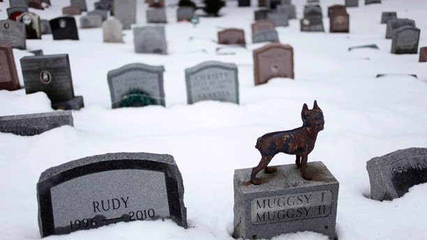 Jan. 19, 2011: In this file photo, headstones marking the graves of pets are spread throughout the Hartsdale Pet Cemetery in Hartsdale, N.Y.