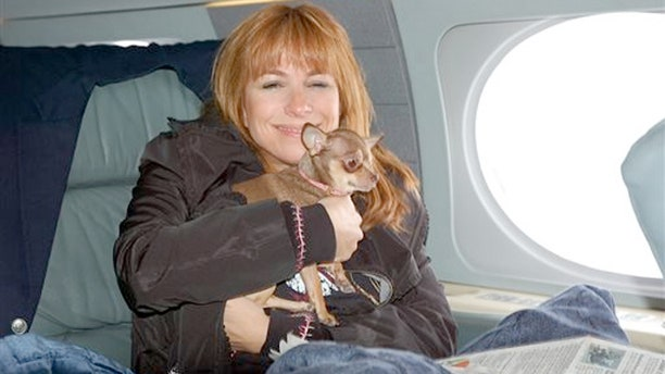 """Jill Zarin, actresss of """"Real House Wives of New York,""""  had to take a cross-country business trip but 9-year-old dog Ginger was sick. She couldn't leave the 7-pound dog behind, so she hired a vet to go with them."""