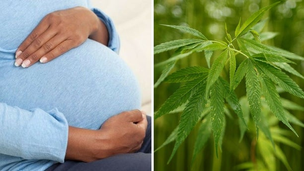 Smoking marijuana was on the rise among pregnant women in California, a study showed.