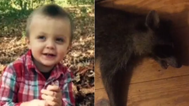 Chandler Mahaffey's mom said she heard her son screaming on the porch and found him being held by the rabid animal.