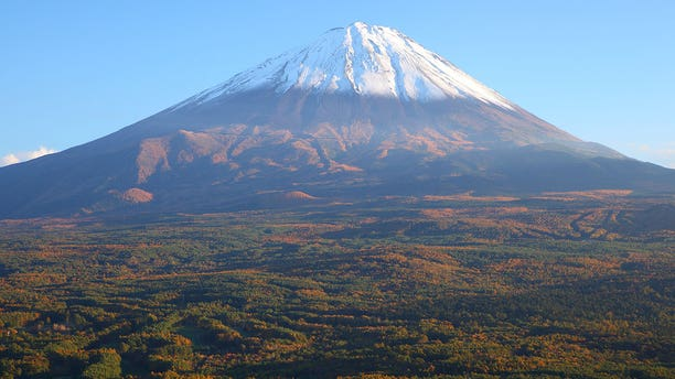 Aokigahara, which sits at the northwest base of Mount Fuji, is located in both the Yamanashi and Shizuoka prefectures.