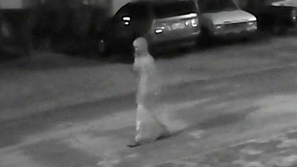 Investigators are asking the public for help identifying this person seen on the night of one of the killings.