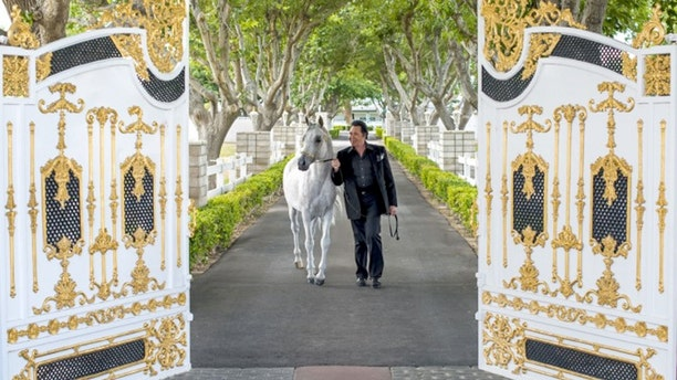 Wayne Newton's home holds an astonishing collection of exotic items and memorabilia collected over decades from his time performing with some of the biggest names in music.
