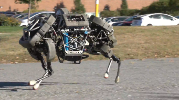 Boston Dynamics' robotic quadruped named WildCat can run up to 16 mph (25 km/h).