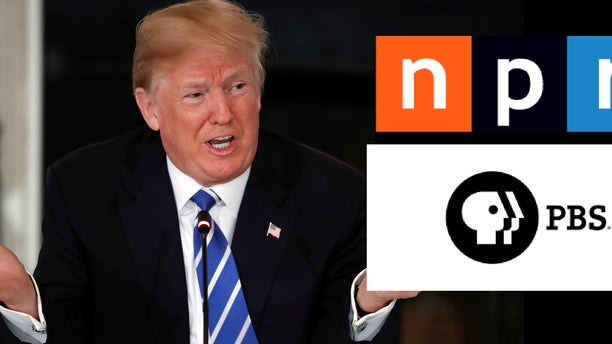 President Trump proposed cutting funding for PBS and NPR, but the suggestion faces long odds in Congress.