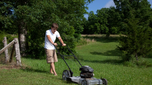 Make your life easier, and give that lawn mower a rest.