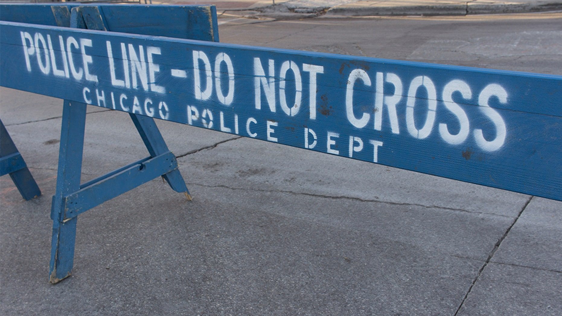 Chicago has some 60 gangs, with several hundred factions within them. The city has had more than 450 homicides this year, many of which police have linked to gangs.