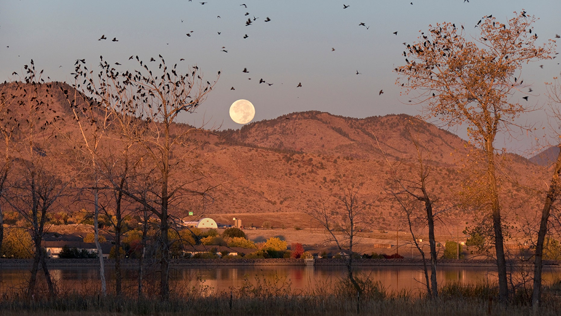The Hunter's Moon is set to take place at 12:45 p.m. EDT on Wednesday.