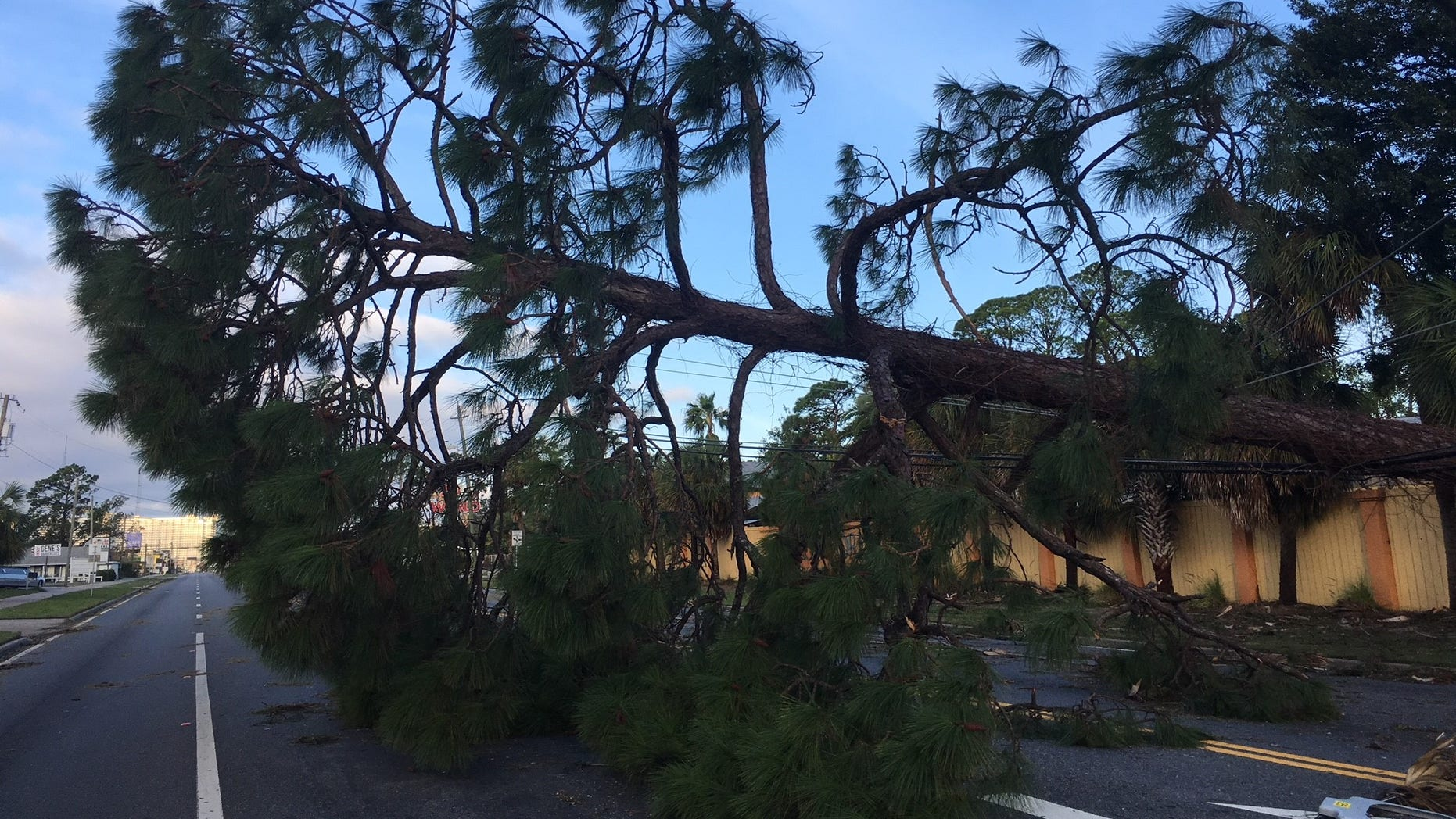 In the wake of Hurricane Michael, people are left wondering: If a neighbor's tree falls on your property, who is responsible?