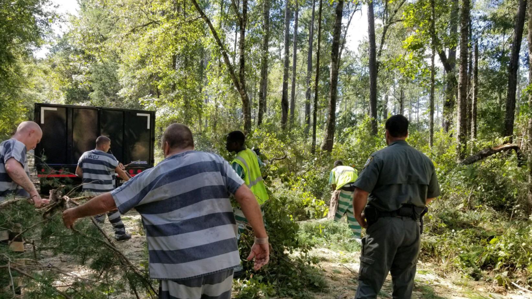 Inmates in Walton County, Florida, volunteered Thursday to help clear debris Hurricane Michael left in the Euchee Valley.