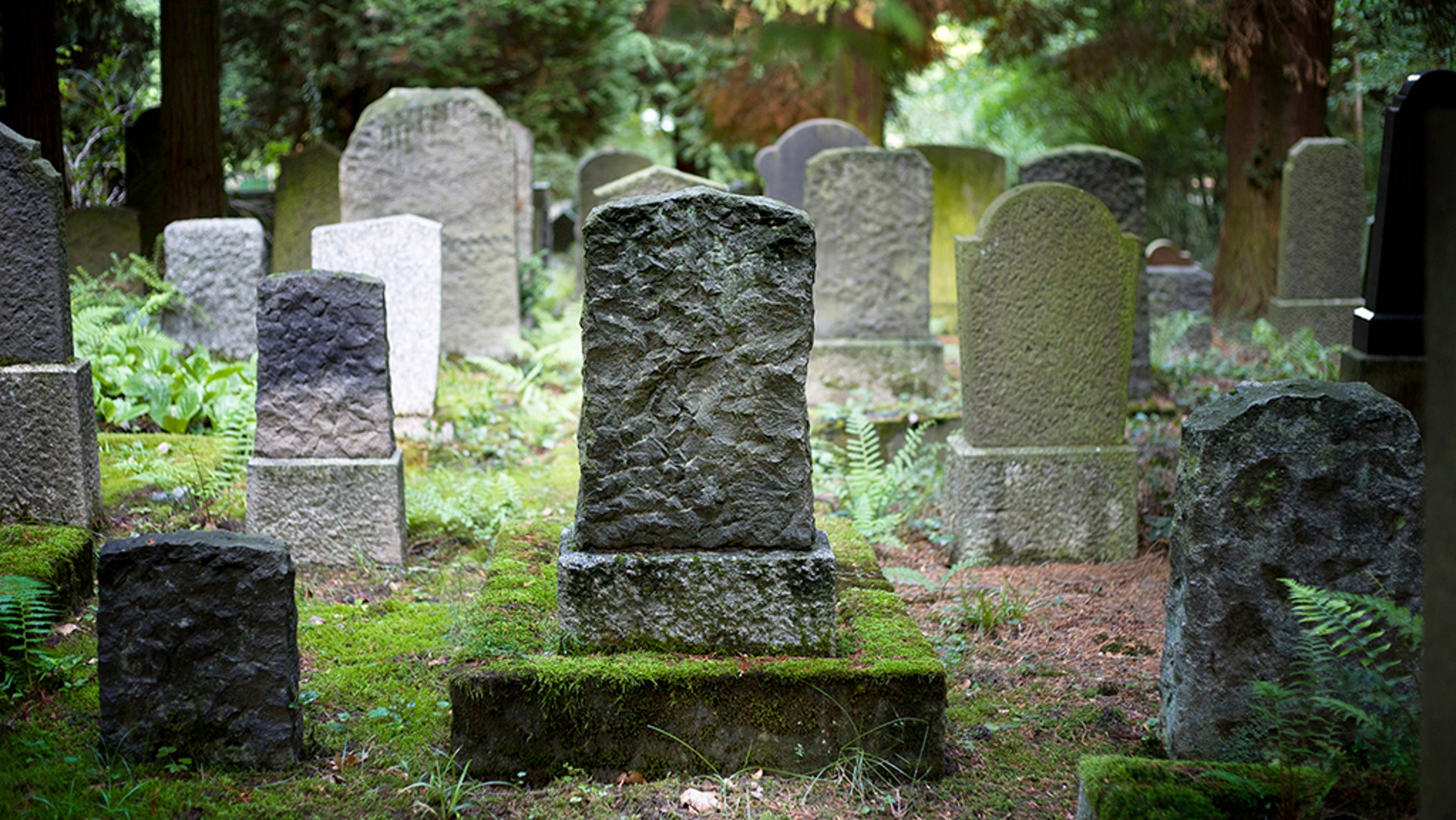 A cemetery manager in Connecticut is accused of a macabre scheme to profit from the new over the old.