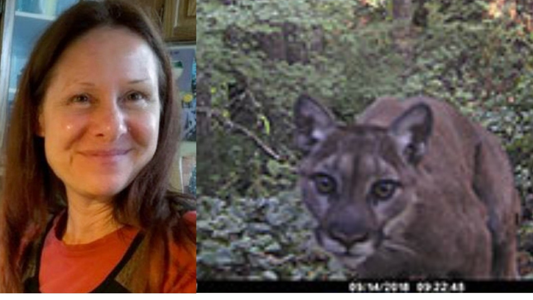 Diana Bober, 55, was killed in a suspected cougar attack in September.