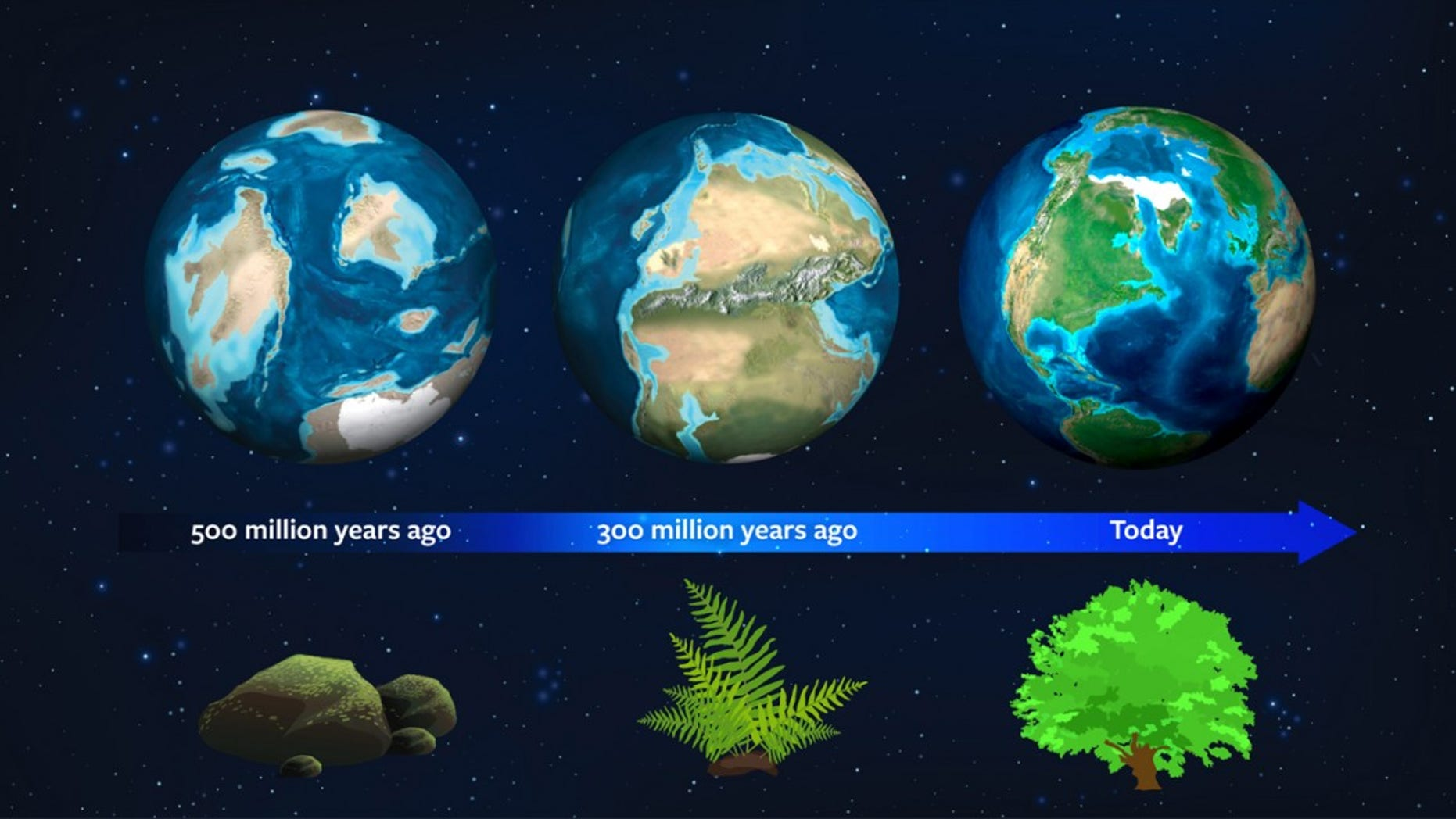 Earth's natural history may now serve as a guide for astronomers to spot exoplanets. About 500 million years ago, this planet had a different light signature due to the dominance of moss. About 300 million years ago, ferns dominated and mature plant forms rule today - strengthening our planet's light signature (Jack O'Malley-James/Wendy Kenigsberg/Brand Communications).