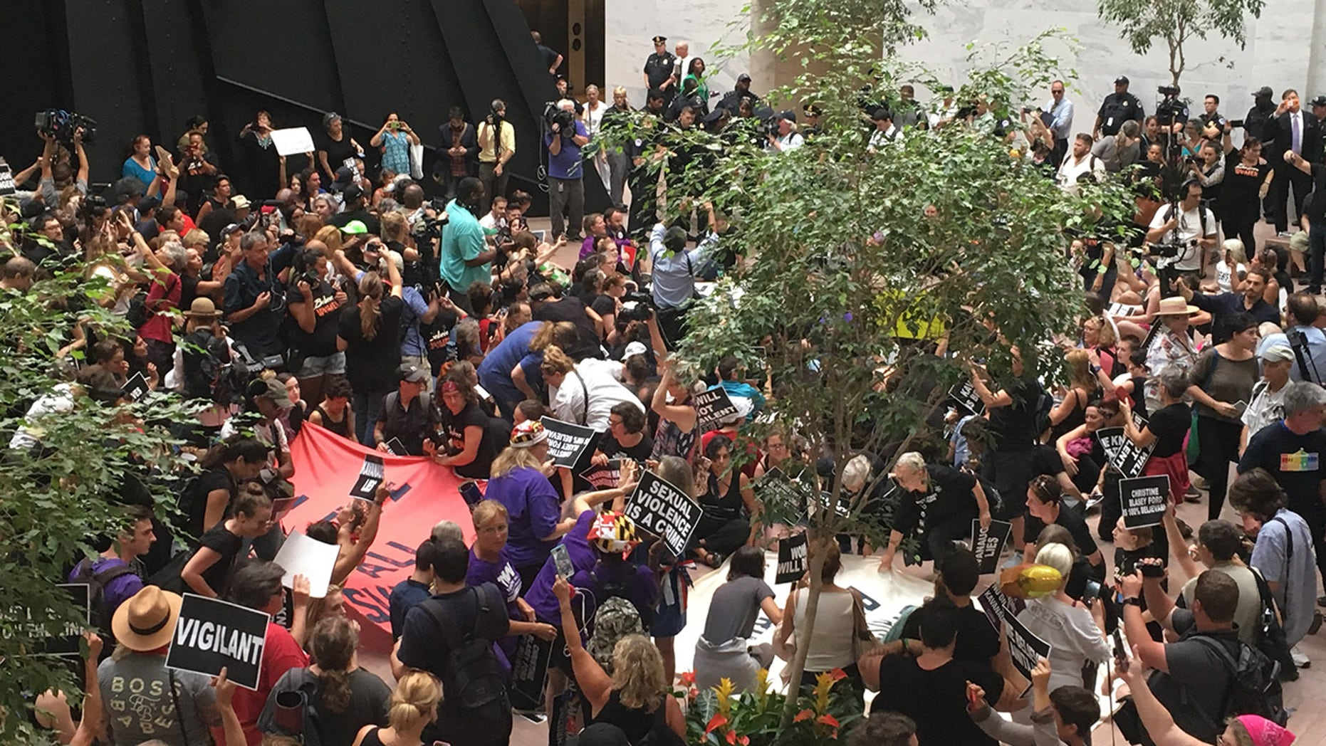 Hundreds of protesters demonstrate against Brett Kavanaugh's nomination to the Supreme Court in the Hart Senate Office Building in Washington. (NuNu Japardize/Fox News)
