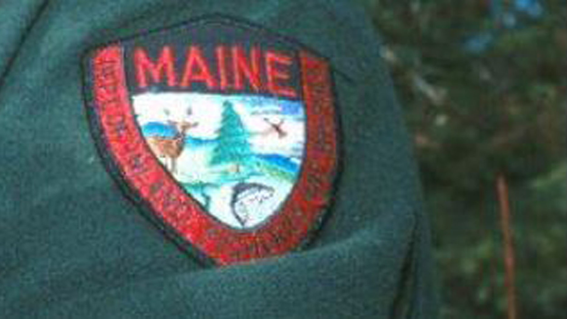 A man who meant to shoot a turkey accidentally hit a passer-by in the chest on Monday morning, the Maine Warden Service said.