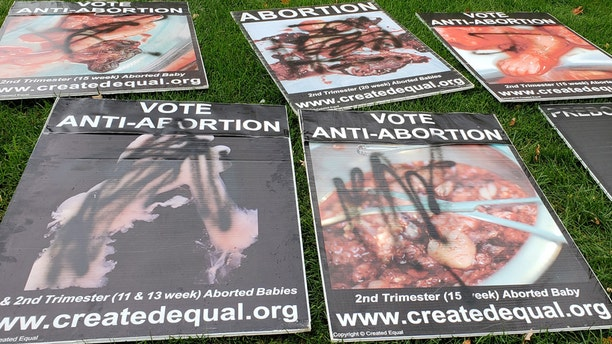 A left-wing student spray-painted and knocked down anti-abortion signs on campus.