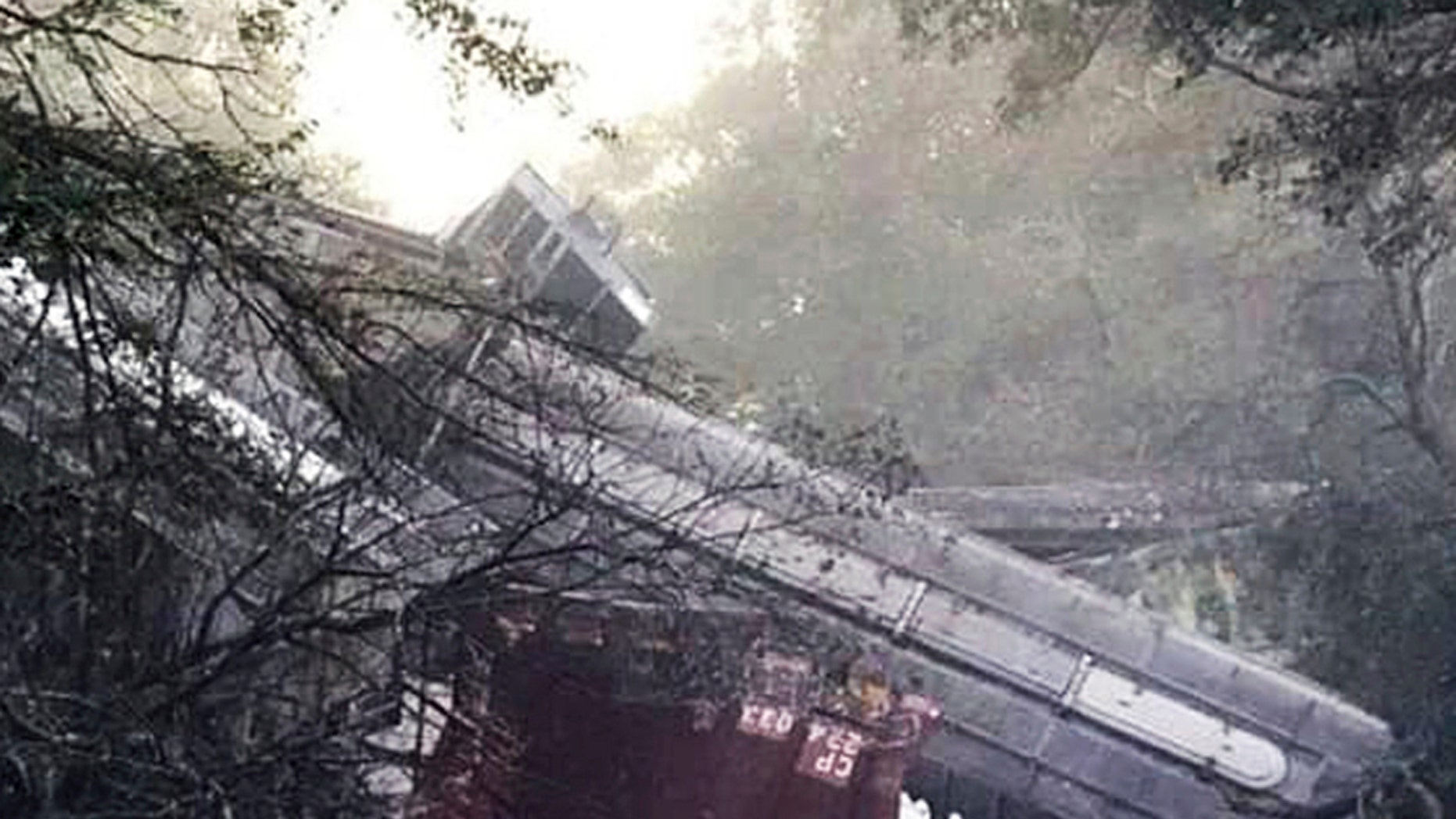 This photo provided by Montezuma police shows a train derailment on Saturday, Nov. 17, 2018 in Byromville, Ga.