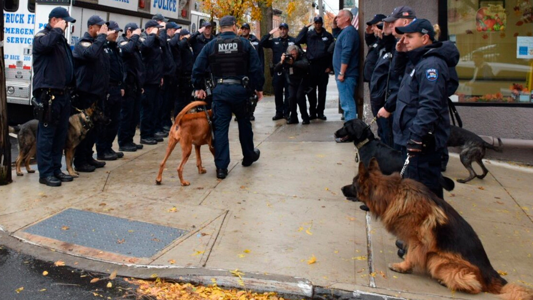 In this Nov. 5, 2018 photo, provided by the New York City Police Department (NYPD) an honor guard of police officers salute as Angel, a 5-year-old bloodhound, is walked by her human partner, Officer Manuel Orellana, into Staten Island's Rosebank Animal Hospital to be euthanized, in New York. An aviation flyover also honored the Emergency Services K-9 just before she died after being diagnosed with cancer in August.