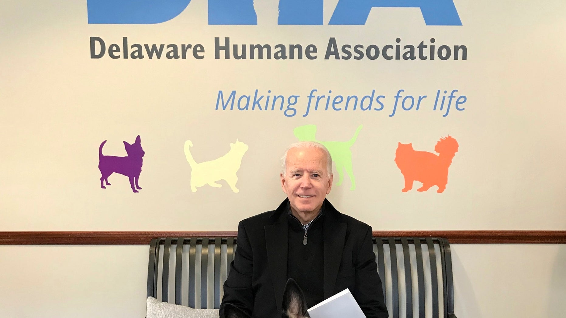 This photo provided by Delaware Humane Association shows former Vice President Joe Biden with his new dog at the Delaware Humane Association in Wilmington. The association said Saturday that Biden and his wife, Jill, have adopted a 10-month-old German shepherd named Major. Director of Animal Care Kerry Bruni said the Bidens had been providing foster care for the dog in their home for several months and were ready to make the adoption official.