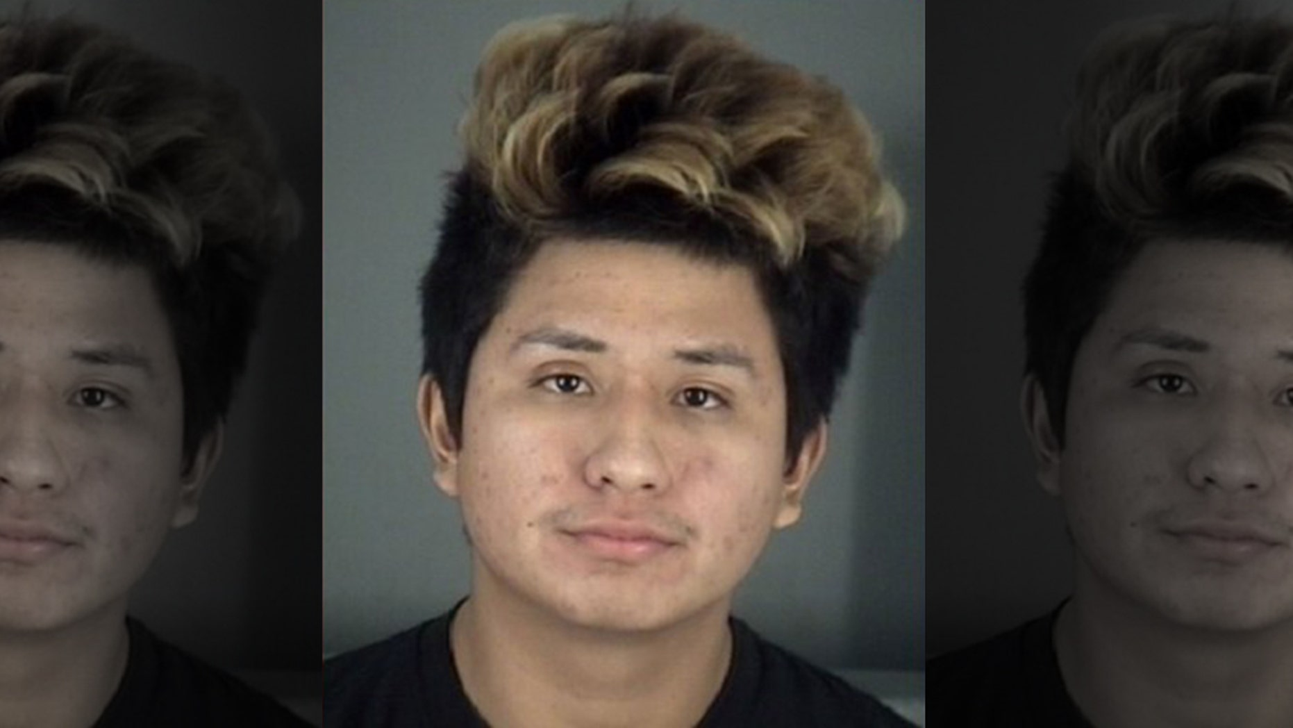 Daniel Fabian, 18, was arrested on Wednesday for allegedly raping a 15-year-old girl as he took a break from playing a video game.