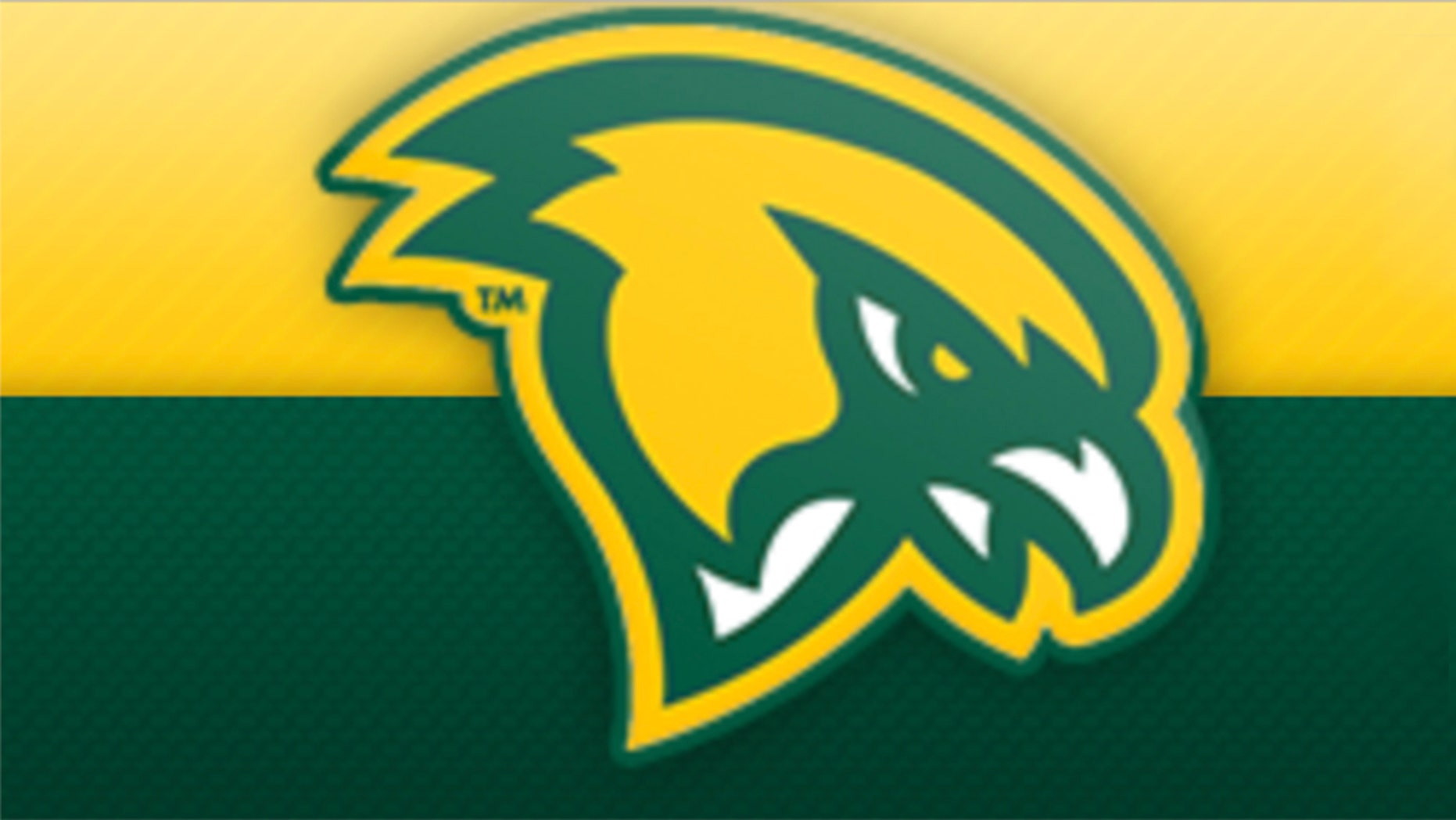 A Fitchburg State University player was seen elbowing an opponent from Nichols College during a game on Tuesday.