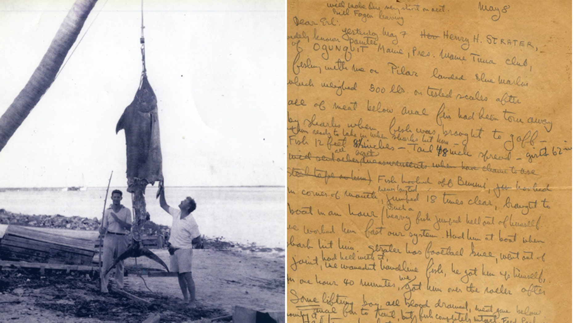 The letter and photo documenting the fishing trip that landed a 500-pound Atlantic Blue Marlin. Hemingway is in the right of the photo (Nate D. Sanders Auctions)