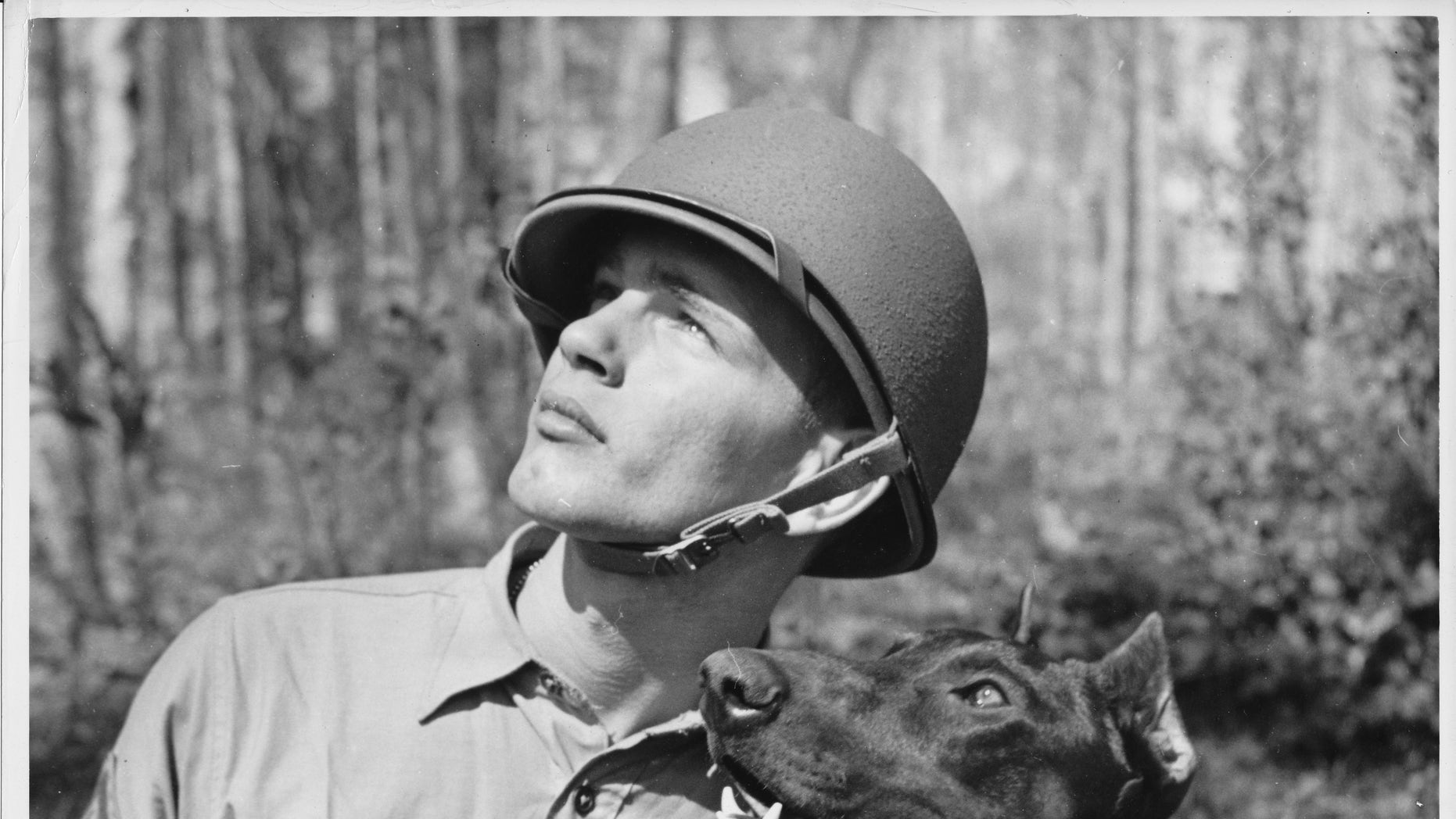 """Pfc. Homer J. Finley, Jr. USMC, is shown with his canine leatherneck buddy, 'Jan' spotting a make-believe sniper in a tree during the day's rugged training period. Pvt. 'Jan', a Doberman Pinscher, was enlisted by his owner for the duration."""
