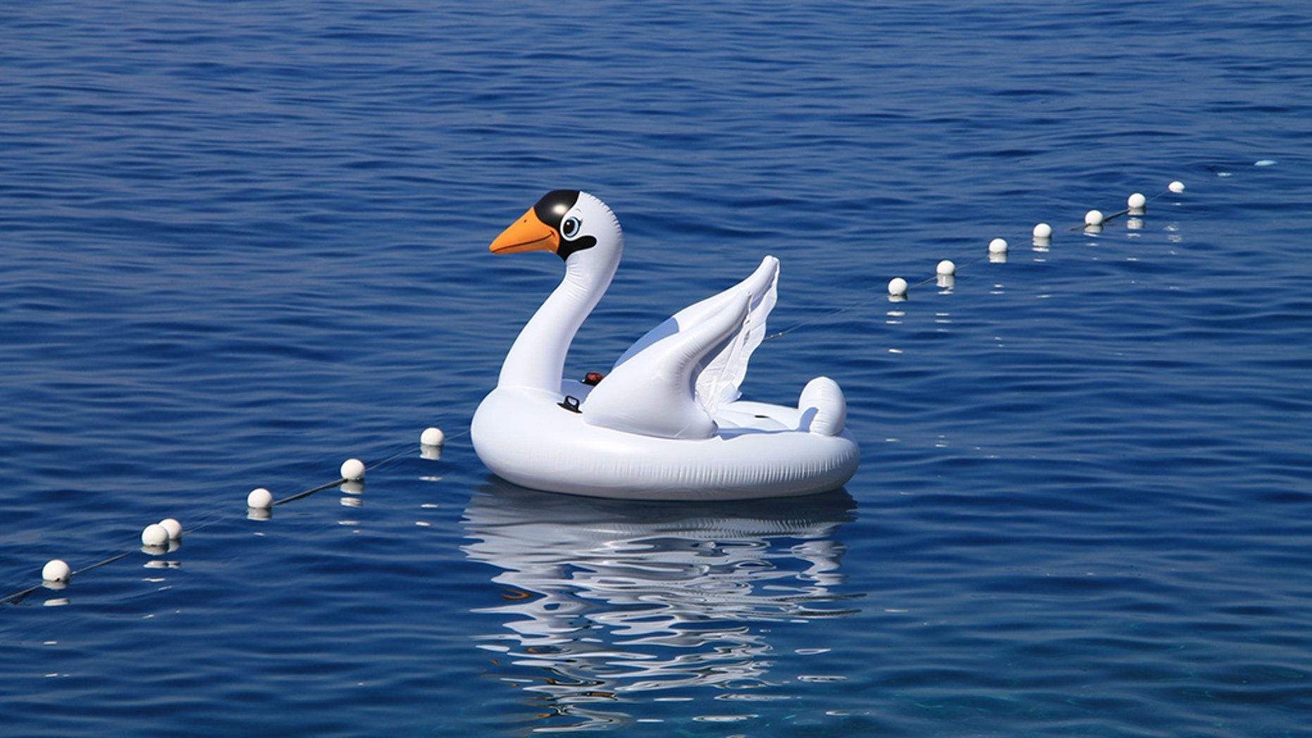 d2df7e1f388c Florida woman and son drift miles away from shore on inflatable swan ...