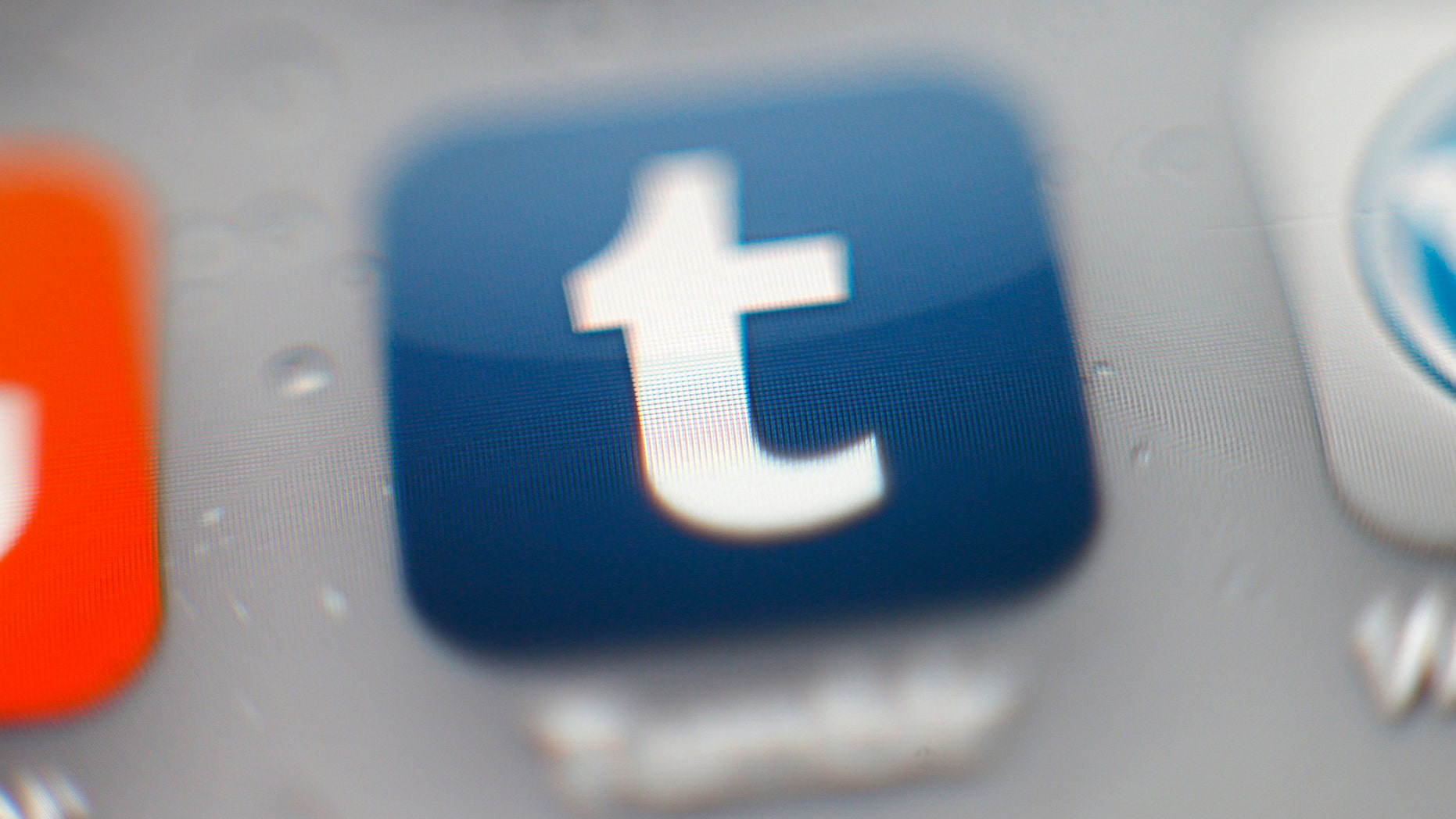 File photo - Tumblr iPhone mobile app icon. (Photo by Hoch Zwei/Corbis via Getty Images)