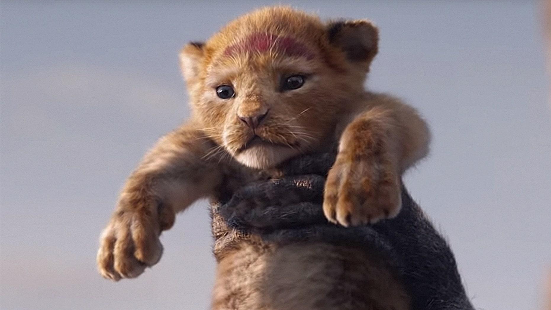 Image result for LIve action lion king
