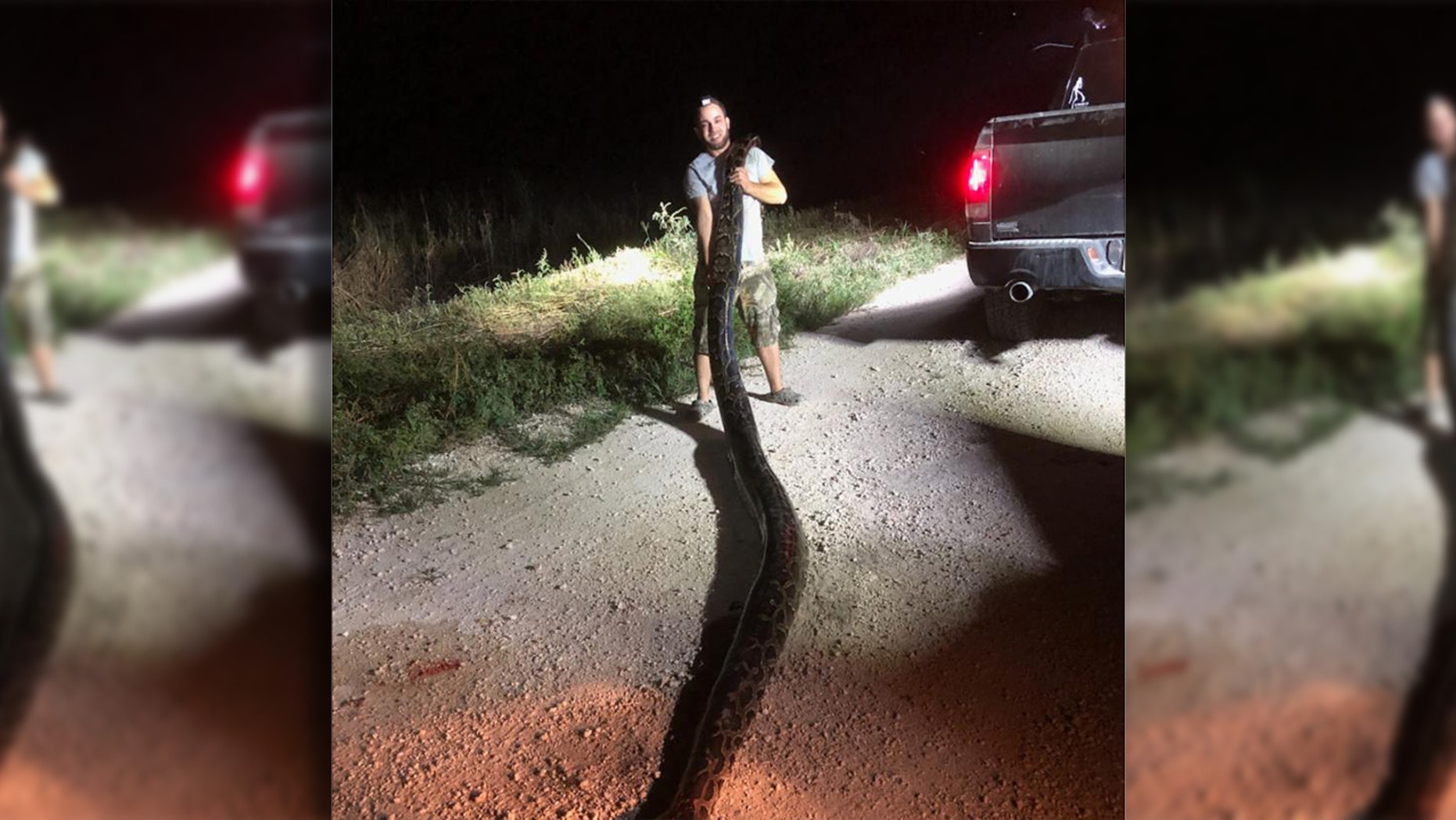 The python weighed 120 pounds, according to the agency.