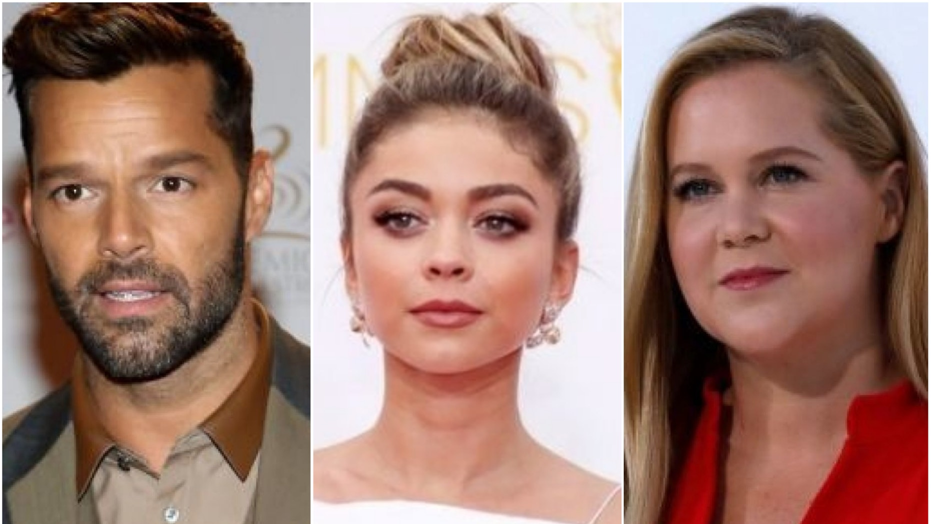 Ricky Martin, Sarah Hyland and Amy Schumer are just a handful of celebrities who have met their significant others online.