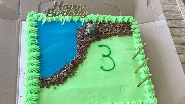 """Another cake decorator managed to """"save"""" the cake by making a frosting pond and placing a frog figurine on the cake right before guests arrived."""