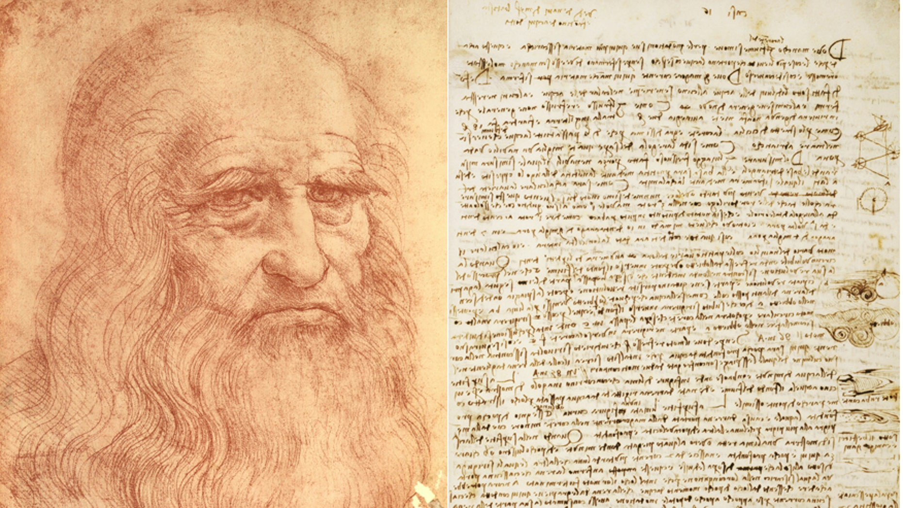 Sketch of Italian polymath Leonardo da Vinci/a sheet of the Codex Leicester.