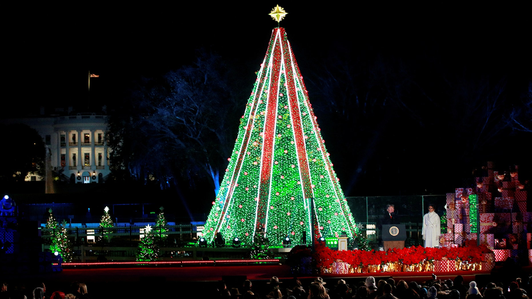A man climbed the National Christmas Tree and refused to get down