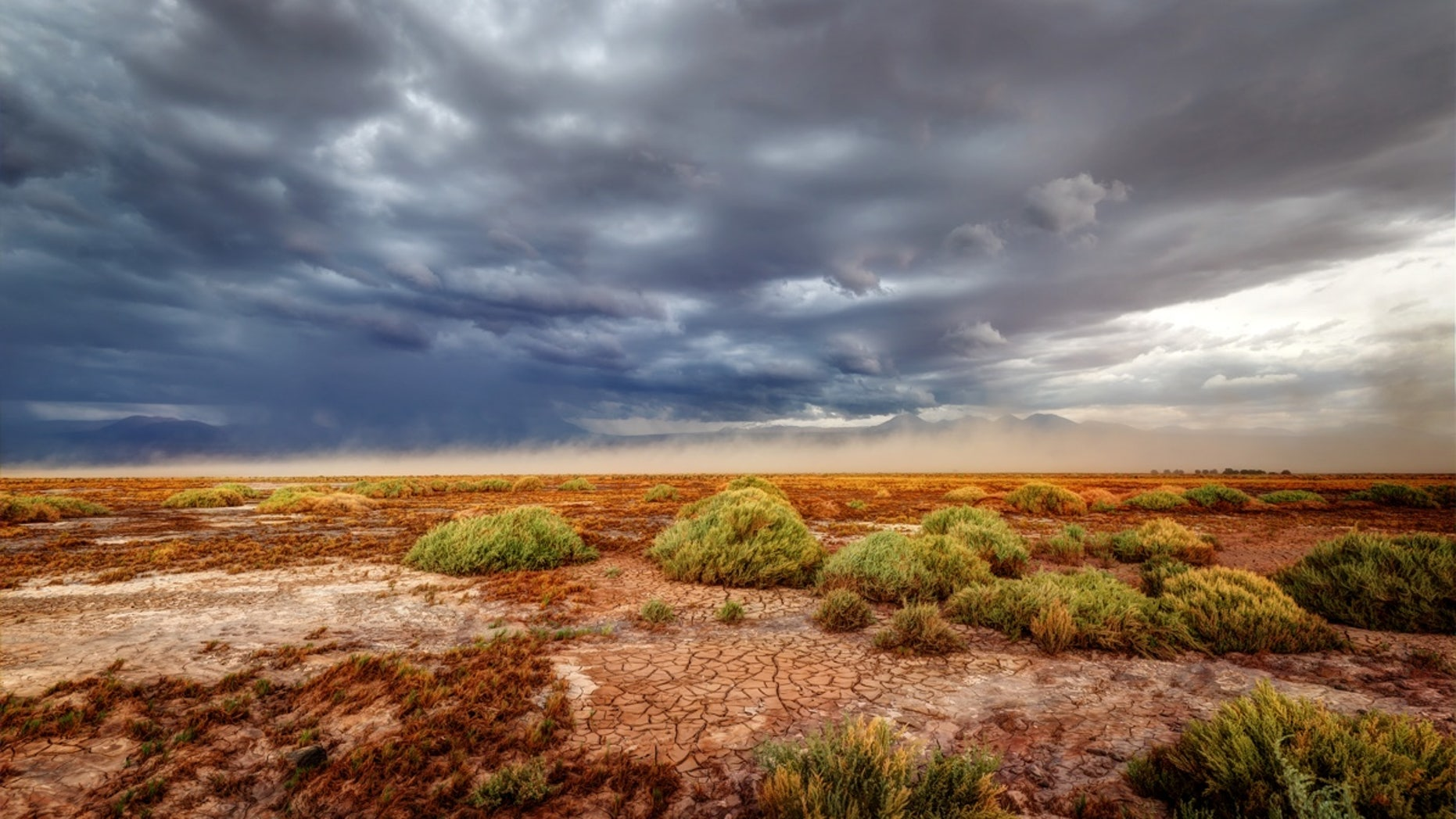 The Atacama desert typically receives less than a half-inch of rain every year.